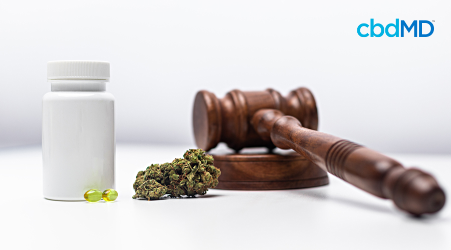 A gavel sits next to a small amount of cannabis and a bottle with cbd capsules near it
