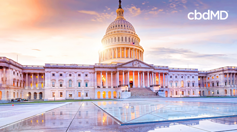 An image of the united states capital at sun set from the plaza