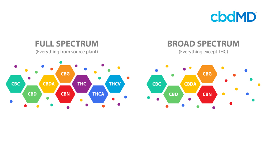 A colorful diagram demonstrates the difference between broad and full spectrum cbd