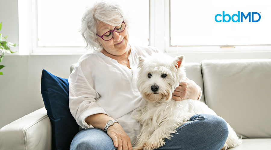 An older woman sits on her couch petting a fluffy white dog that is sitting in her lap