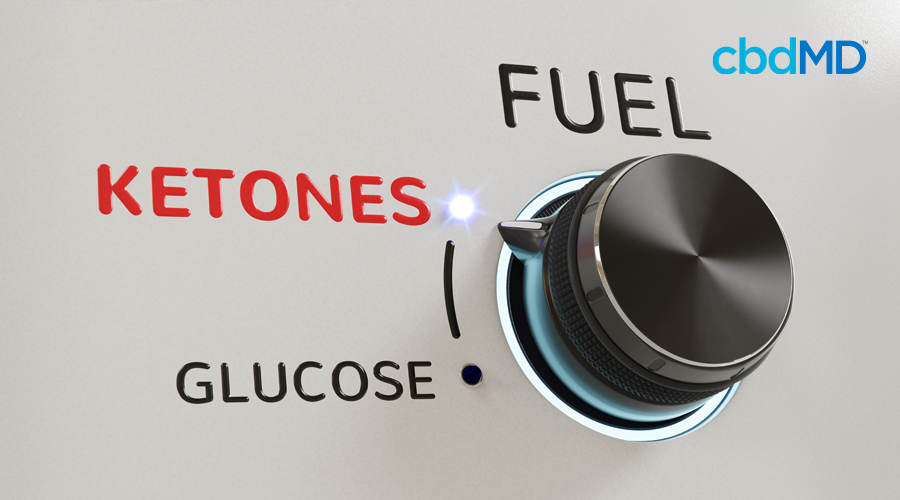 The dial on a stove is set to ketones with the words fuel and glucose above and below it on the dial