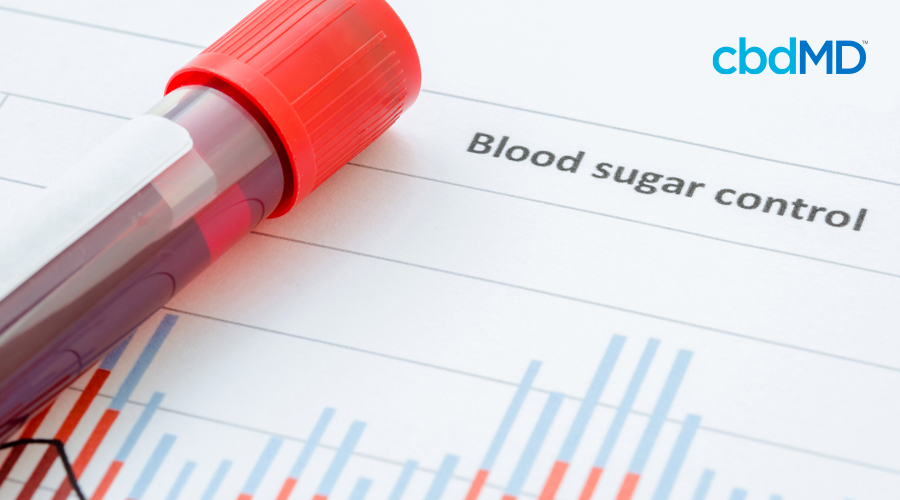 A vial of blood lays atop test results marked blood sugar control at the top