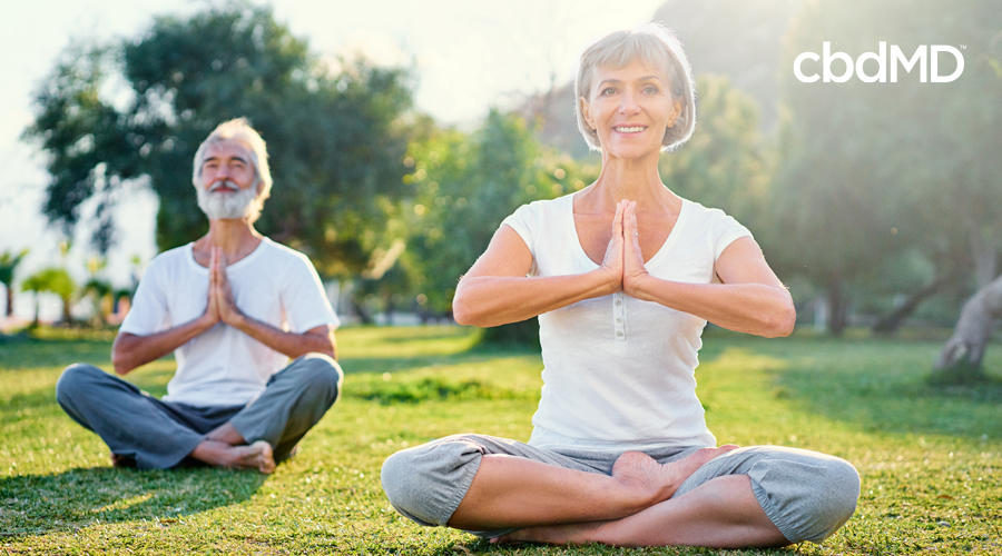 A very healthy looking older man and woman sit in the park doing yoga