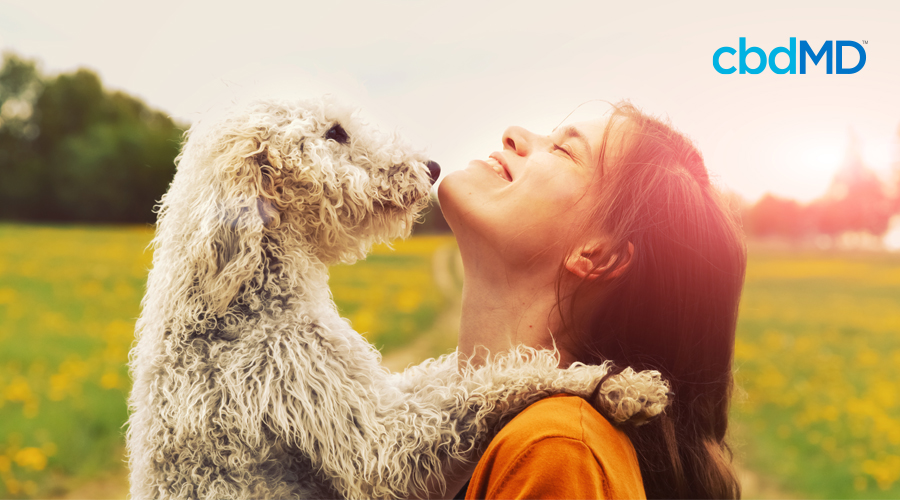 A dark haired woman smiles as she holds up a shaggy white dog at the park
