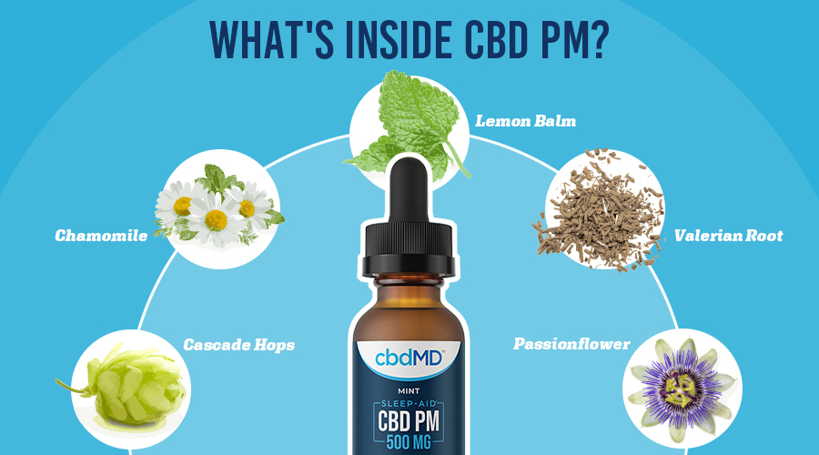 A bottle of 500 mg cbd pm from cbdmd sits in the center with a wide array of herbs and extracts around it