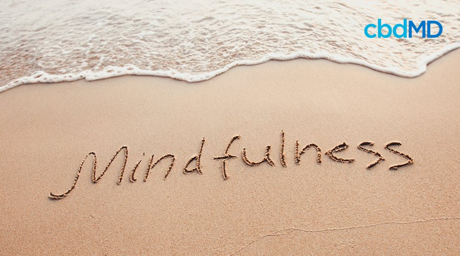 The ocean laps on the beach where mindfulness is written into the sand