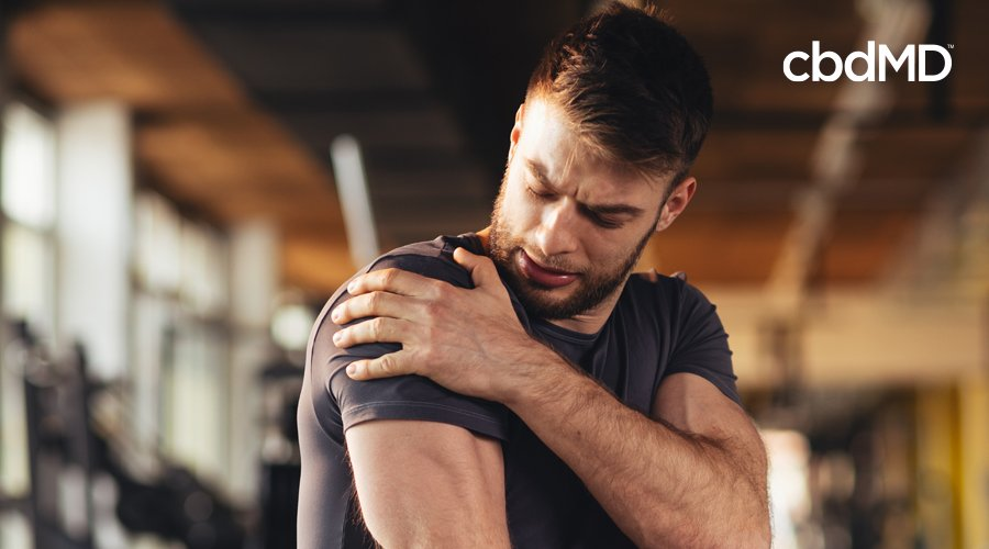 Dark-haired man with short hair and beard massages shoulder in gym wearing gray workout shirt