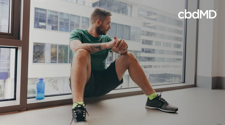 Man with short hair in green shorts and shirt sits against glass window looking out at city