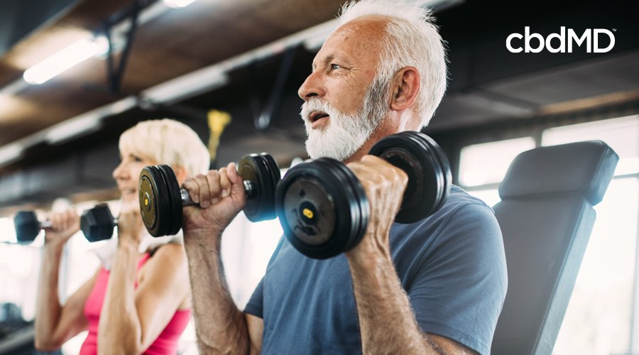 Older man and woman with gray hair sit on workout benches holding weights while in gym