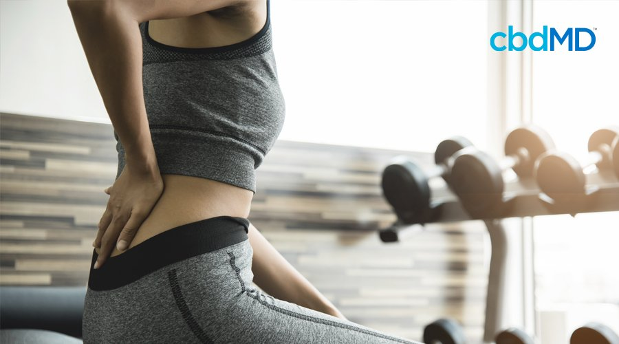 Woman in gray workout attire sits on bench at gym while massaging lower back