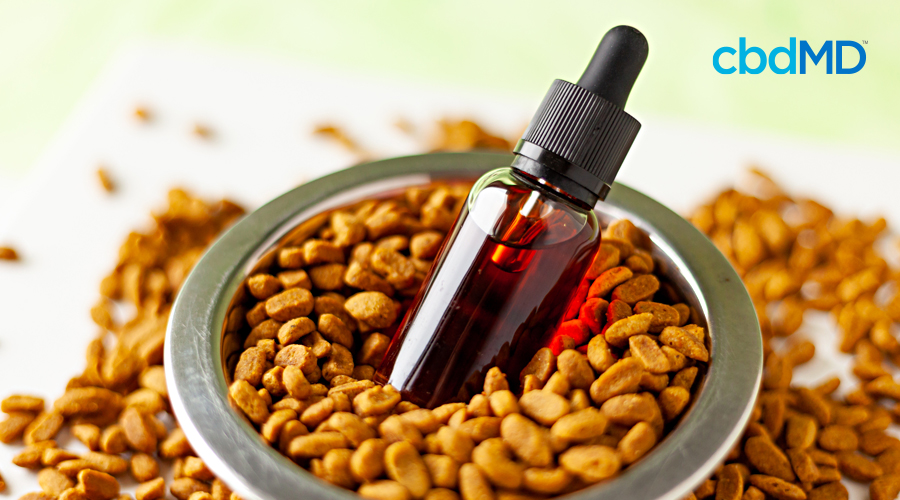 A bottle of pet cbd oil tincture from paw cbd sits in a bowl of pet food
