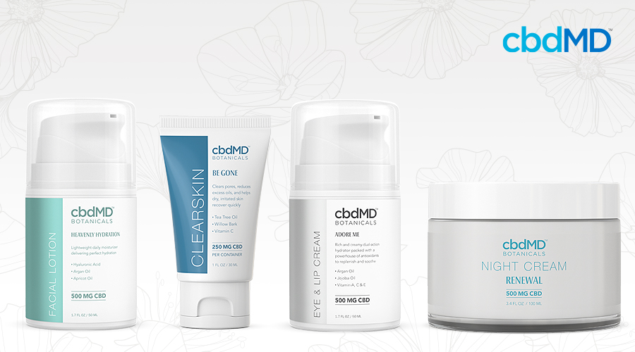 The full line of cbdmd botanicals moisturize products sits in a line against a white background
