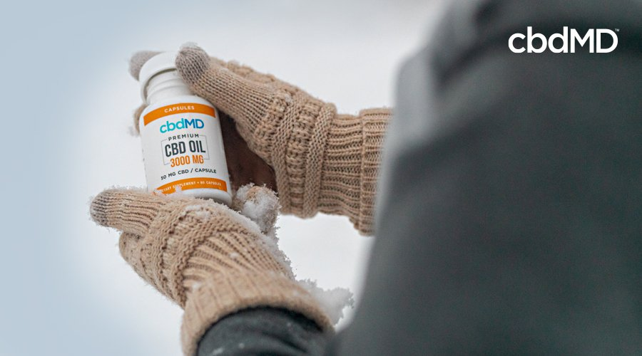 Hands in wool gloves holds a bottle of 3000 mg cbd oil capsules from cbdmd in the snow