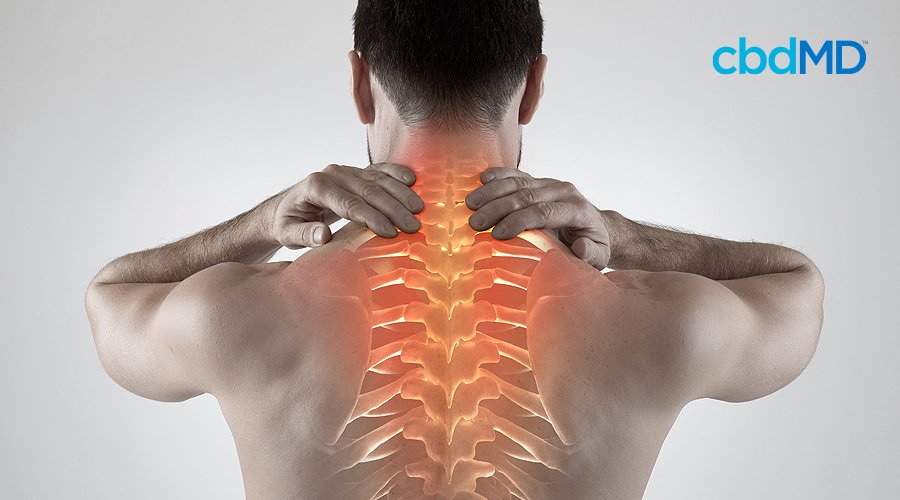 A shirtless man rubs his neck as his back and spine light up in bright red to indicate pain
