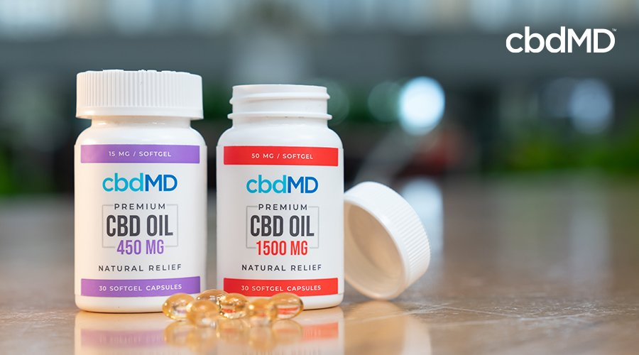 Two bottles of cbd oil capsules from cbdmd in 450 mg and 1500 mg sit side by side
