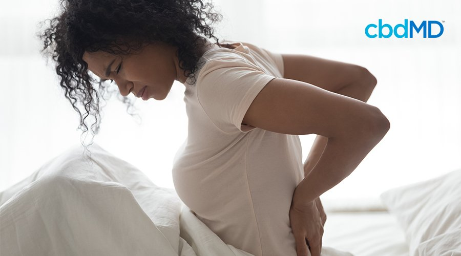 A woman with dark curly hair sits up in bed holding her back in apparent pain