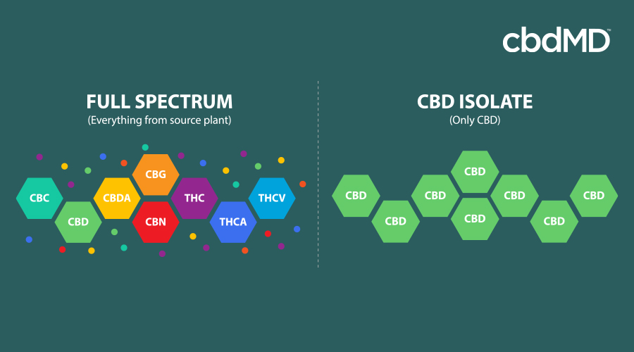 A brightly colored diagram shows the difference between full spectrum and cbd isolate