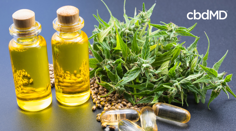 Two bottles of hemp oil sit beside hemp seeds and hemp plants