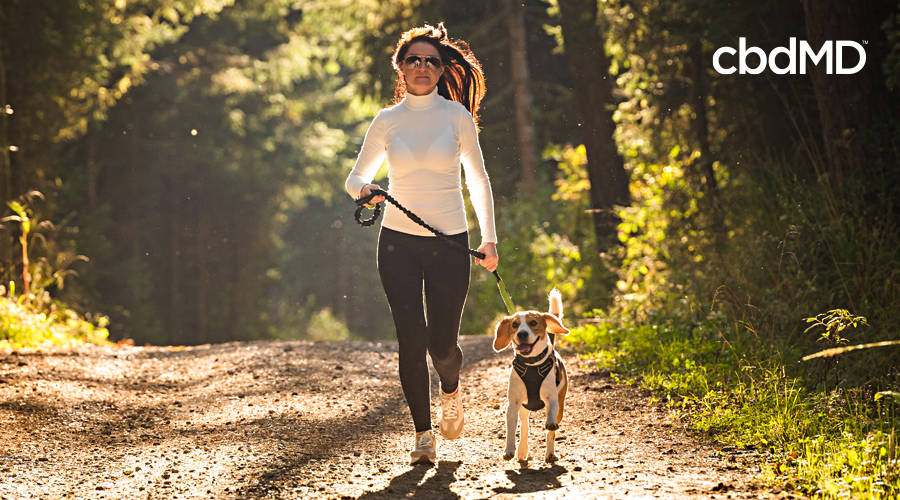 A woman jogs through the park with her beagle on a leash by her side