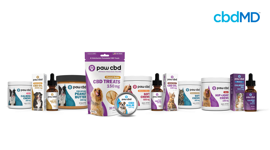 The entire line of paw cbd products sits in a neat row against a solid white background