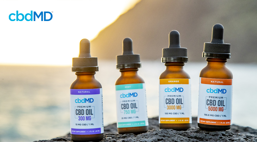 Several bottles of cbd tincture from cbdmd sit on a rock near the beach