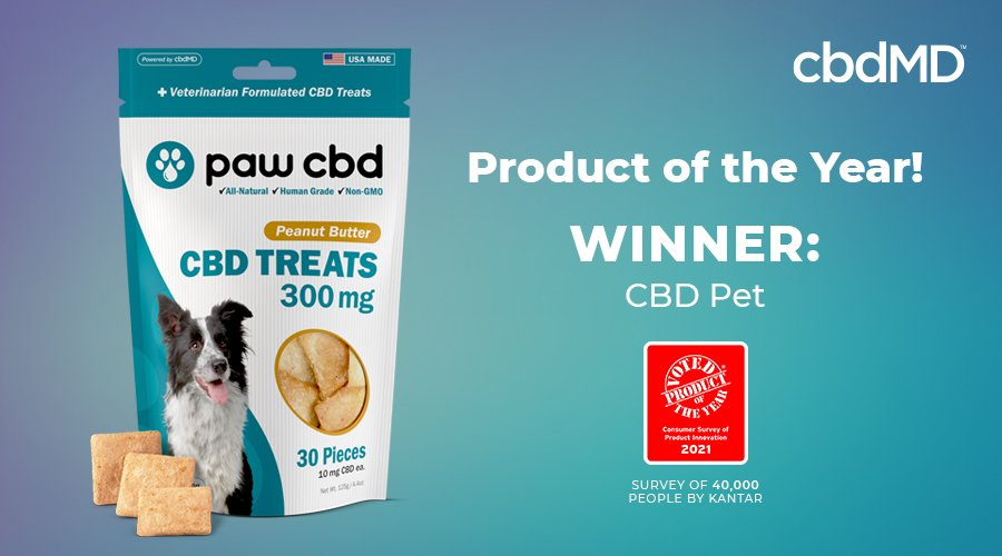 Product of the year, cbd treats for dogs from cbdmd sits by the award