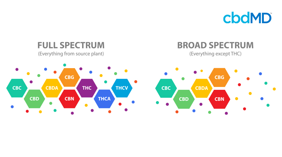 A colorful diagram breaks down the differences in structure of the compounds present in full spectrum and broad spectrum cbd