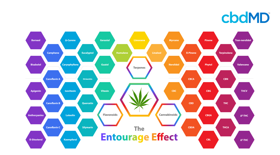 A colorful diagram depicts the various cannabinoids present to provide the entourage effect