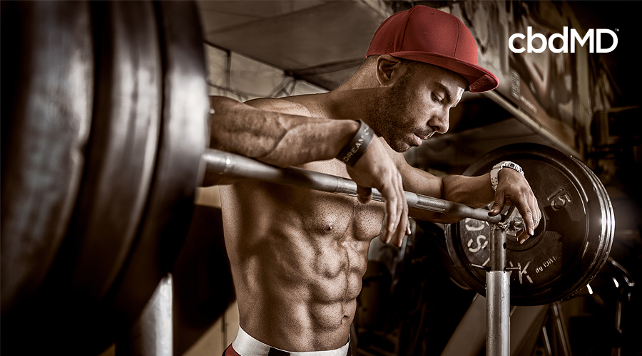 A very physically fit man in a red cap leans over atop the weights set atop a weight bench