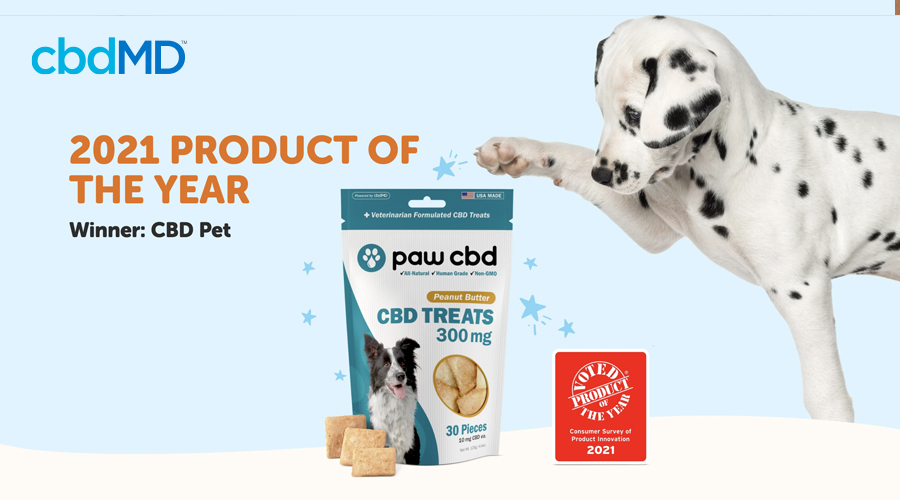 A dalmatian puppy paws at the bag of award winning treats for dogs from cbdmd