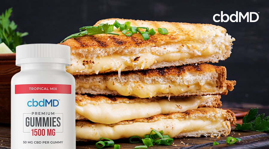 A stack of pressed grilled cheese sandwiches with CBD sits with a bottle of 1500 mg CBD gummies from cbdMD laid over the image