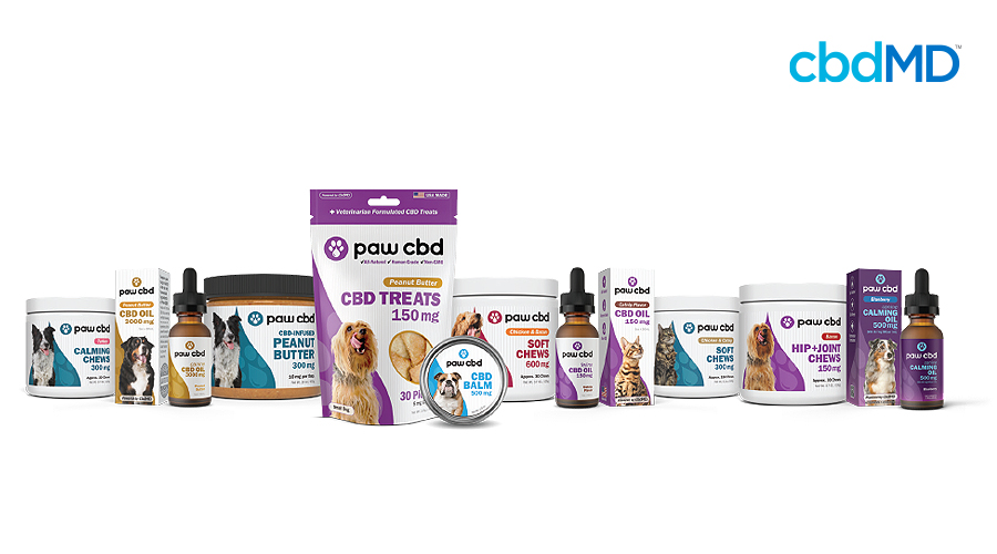 The entire line of pet cbd products from cbdmd and the paw cbd brand sits against a white background