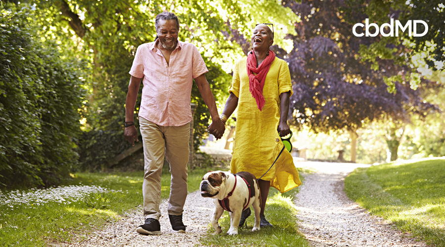 An older couple walks in the park with their english bulldog
