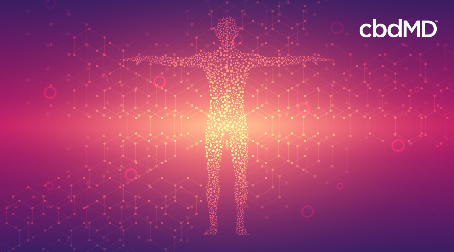 A colorful red and purple image shows a human with arms outstretched in the center surrounded by molecule chains