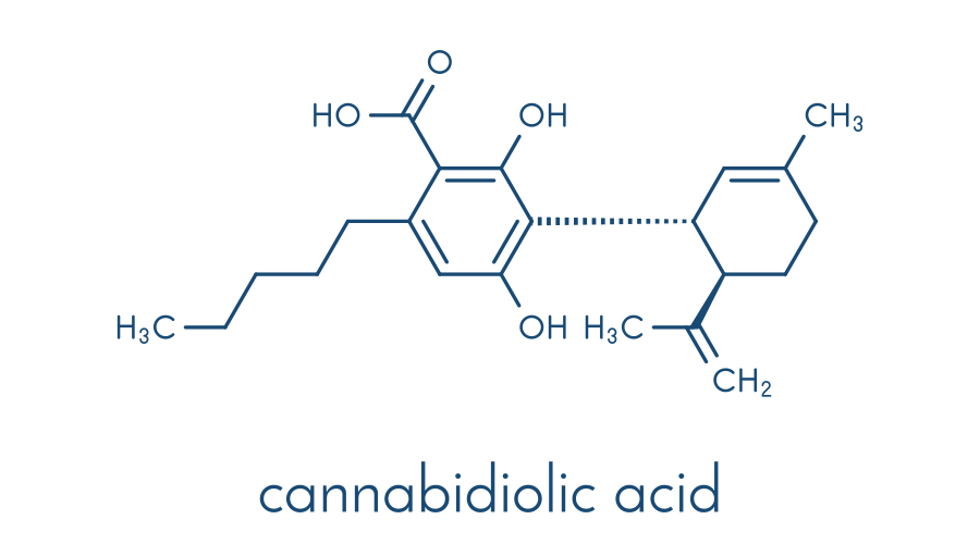 Depiction of the cannabidiolic acid molecule in blue