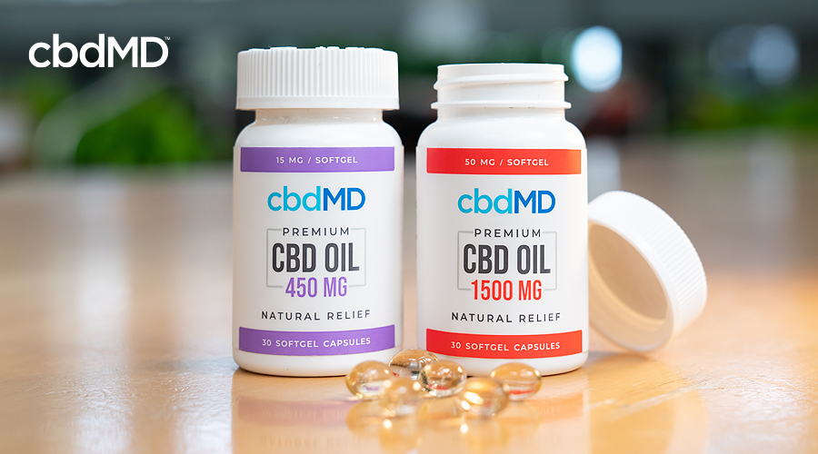 Two bottles of cbd capsules from cbdmd sit on a table