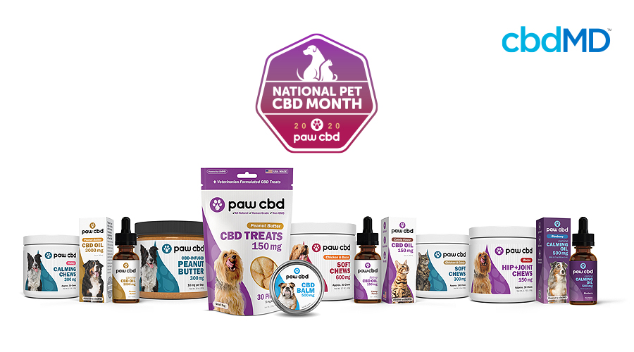 The entire line of Paw CBD products sits against a white background
