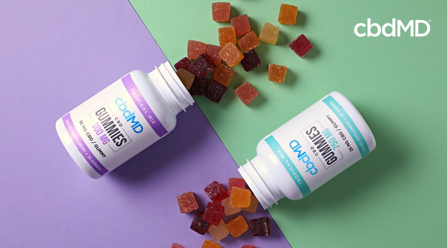 Two bottles of cbd gummies lay in opposite directions with gummies spilling out