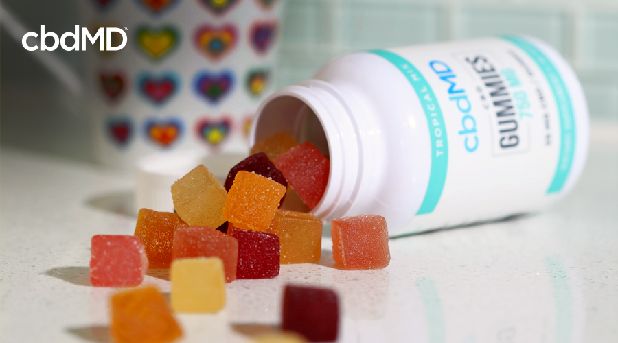 A bottle of cbd infused gummies from cbdmd lays on its side with gummies spilling out