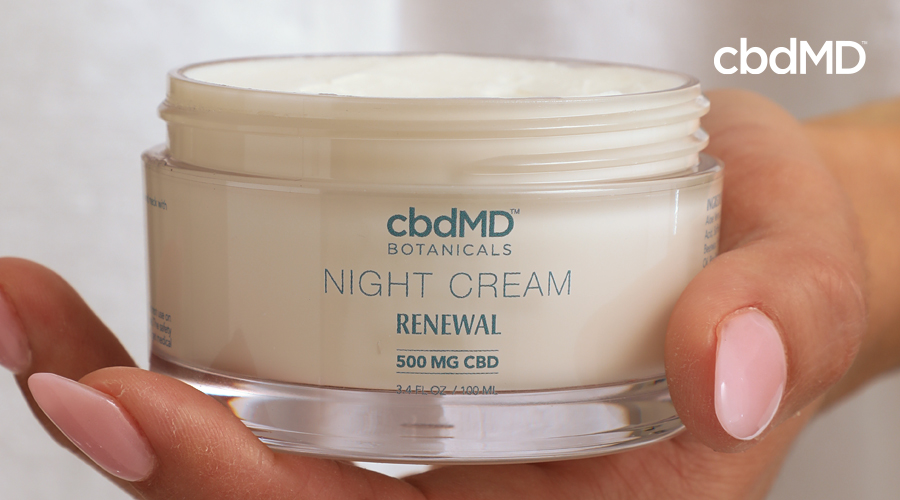 A feminine hand with painted pink nails holds a jar of cbd night cream from cbdmd