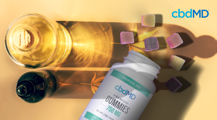 The Benefits of CBD Oil vs CBD Gummies: Which is Right for You?