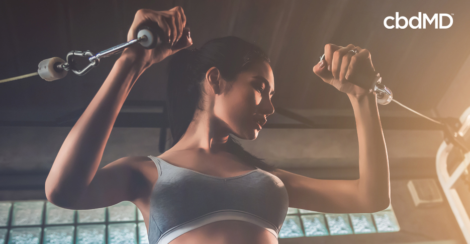 Using CBD to Optimize Your Fitness Performance