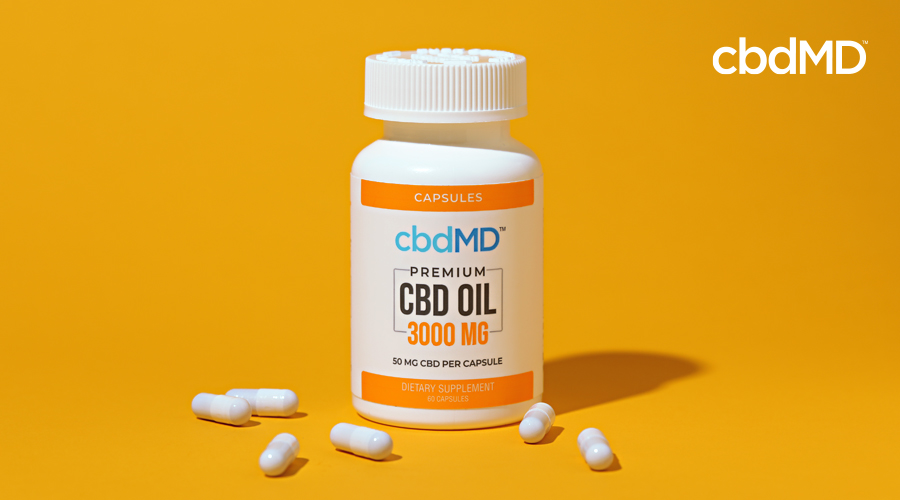 CBD Capsules: The Easy Button for CBD Users
