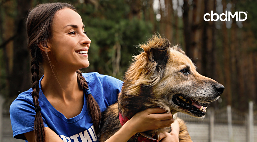 Tips for New Pet Adoption & Care