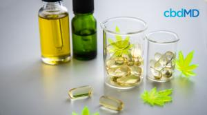 Understanding Different Types of CBD Products