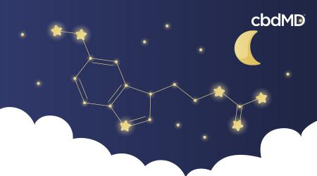What Is Melatonin? What it's Used for & Why We Love it