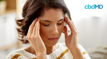 Dealing With Stress? Learn About Why Stress Management Is Important