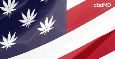The History of CBD In America: A Comprehensive Overview