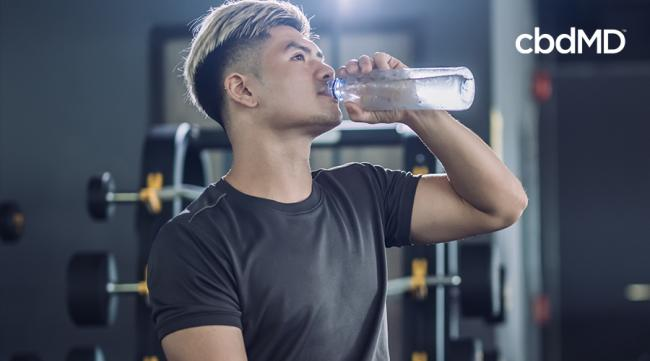 Tips for a Great Post Workout Recovery Routine