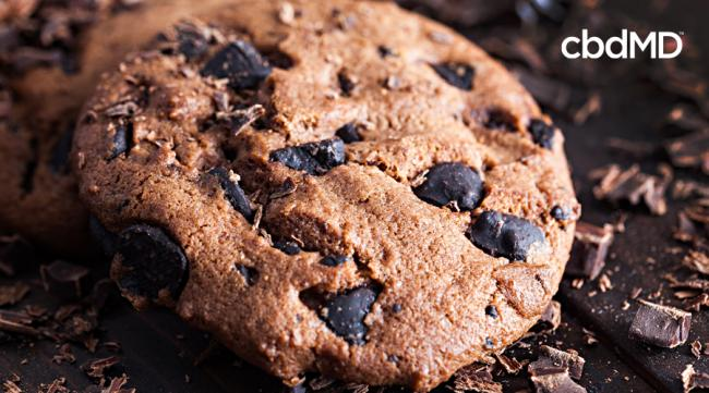 CBD Recipes: Comforting CBD Chocolate Chip Cookies